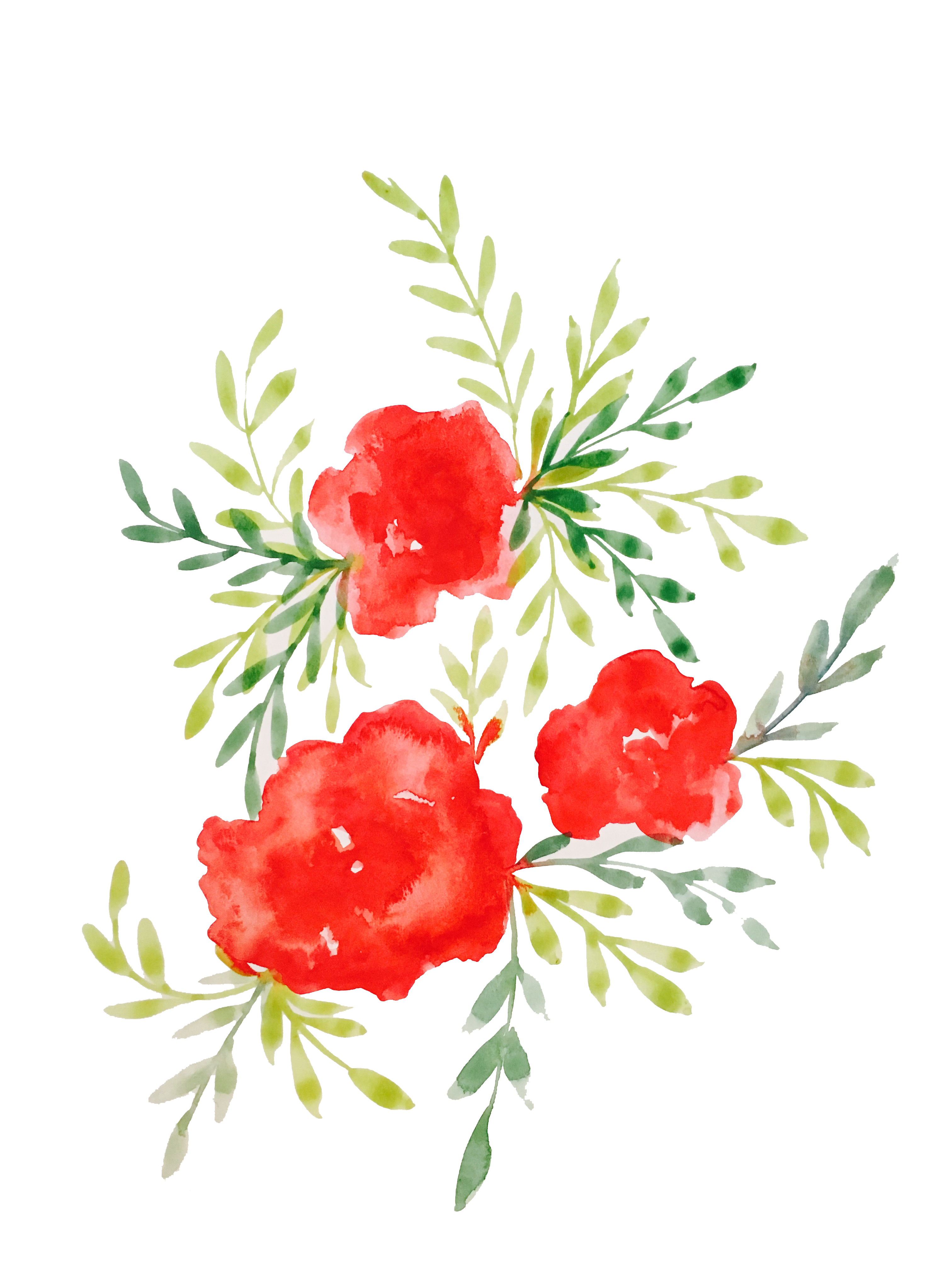 Ocean clipart watercolor. Roses devyn larson designs