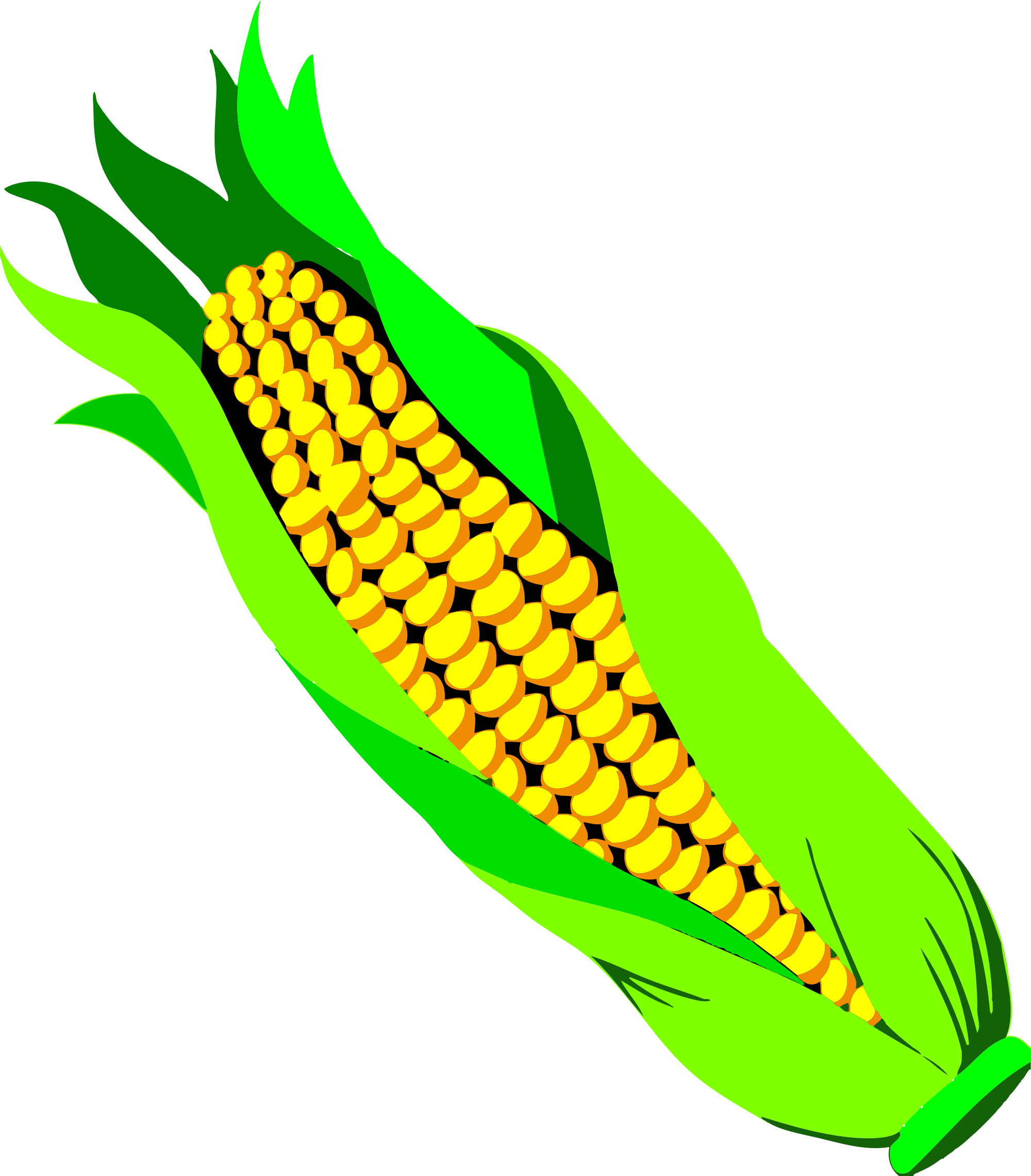 File graphics illustrations free. Fall clipart corn stalk