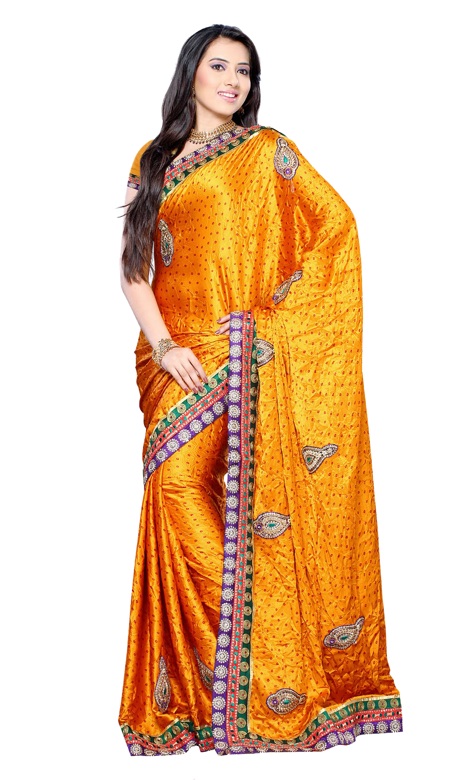 Silk indian saree free. Food clipart fancy