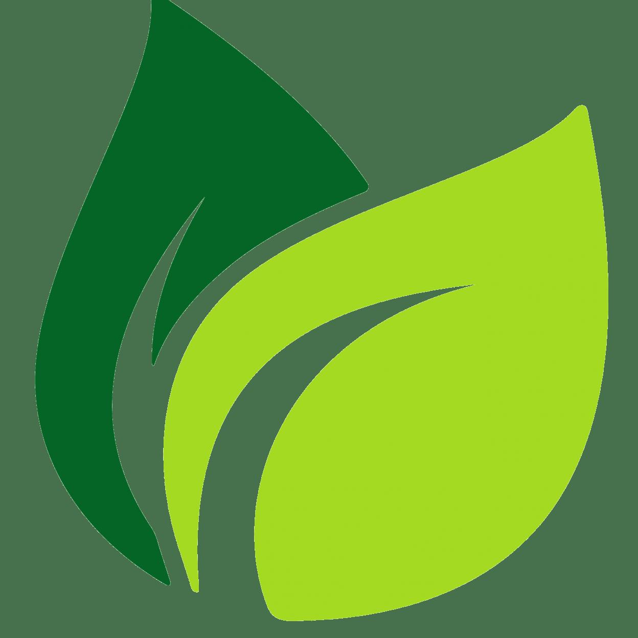Fern clipart daun. Image result for leaf