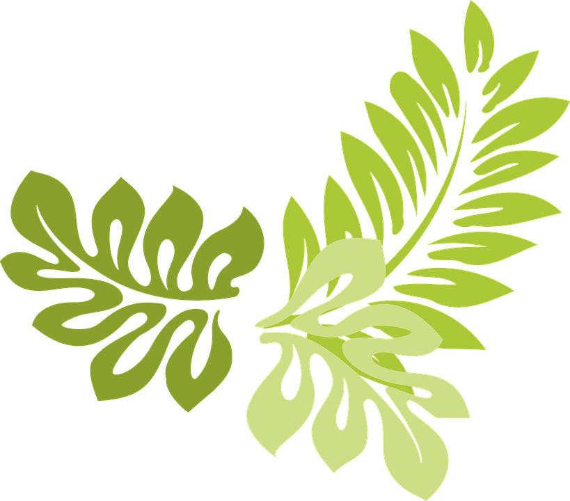 Jungle clipart field. Collection of leaves cliparts
