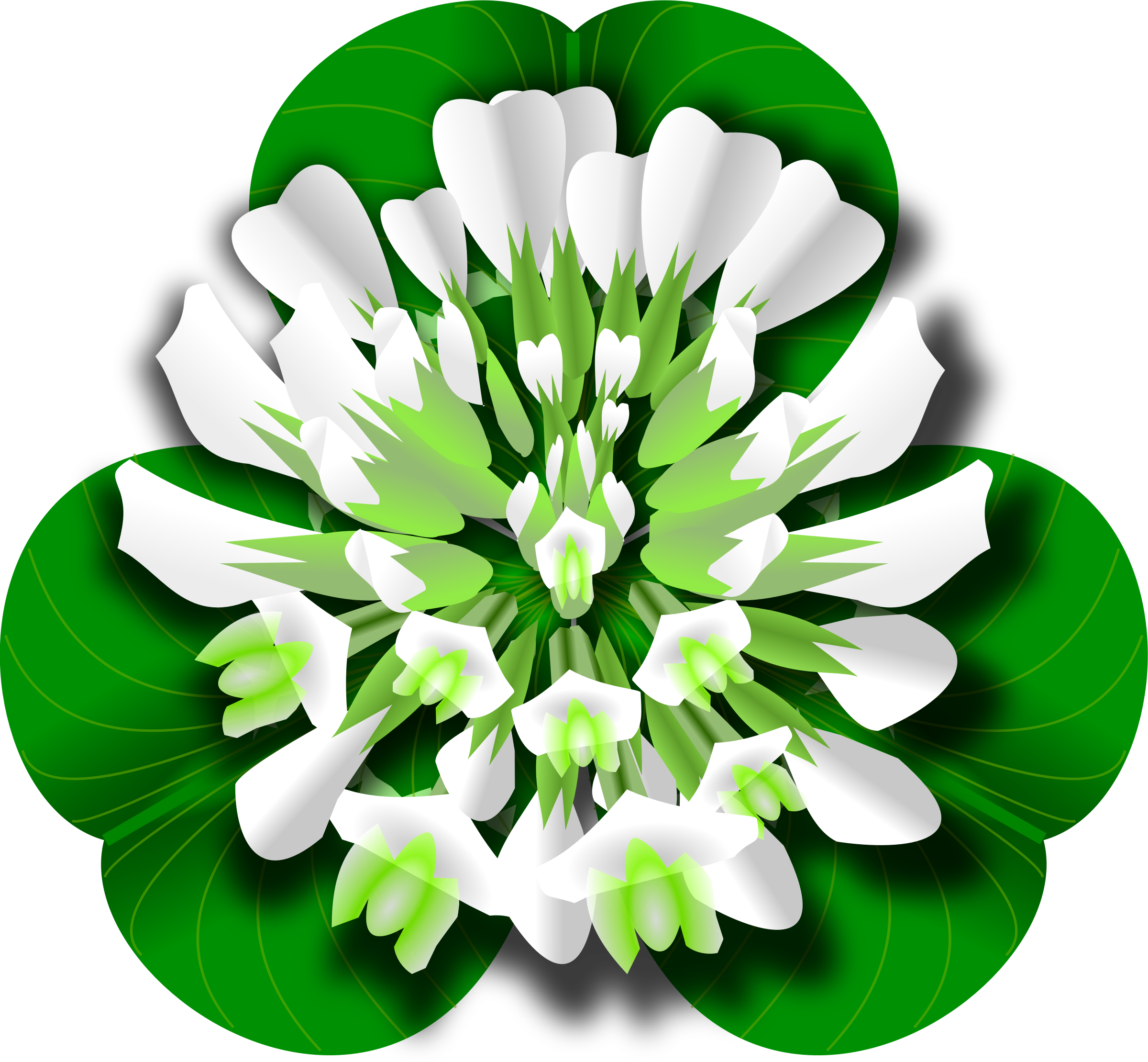 White flower icons png. Clover clipart original