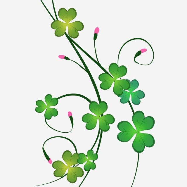 Cartoon plant four leaf. Clover clipart vine
