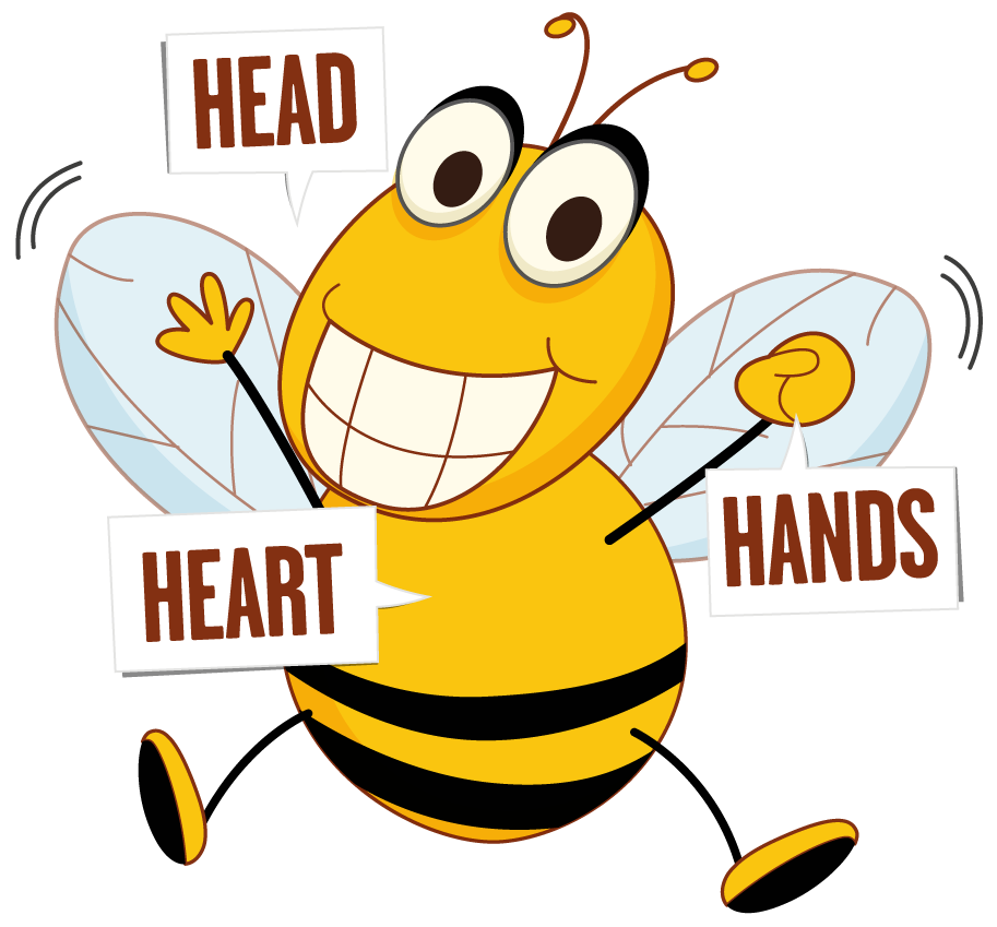 Bee active learn and. Honeycomb clipart heart