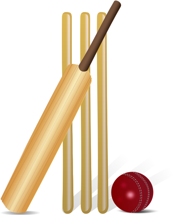 Image for sport clip. Coach clipart cricket coach
