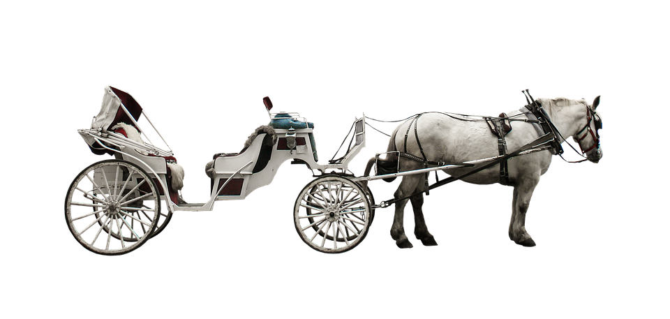 Horses clipart coach. Horse and buggy png