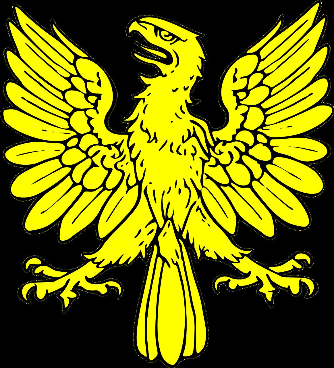 Shield eagle bird gold. Coat clipart cartoon