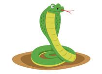 Reptiles clip art pictures. Cobra clipart