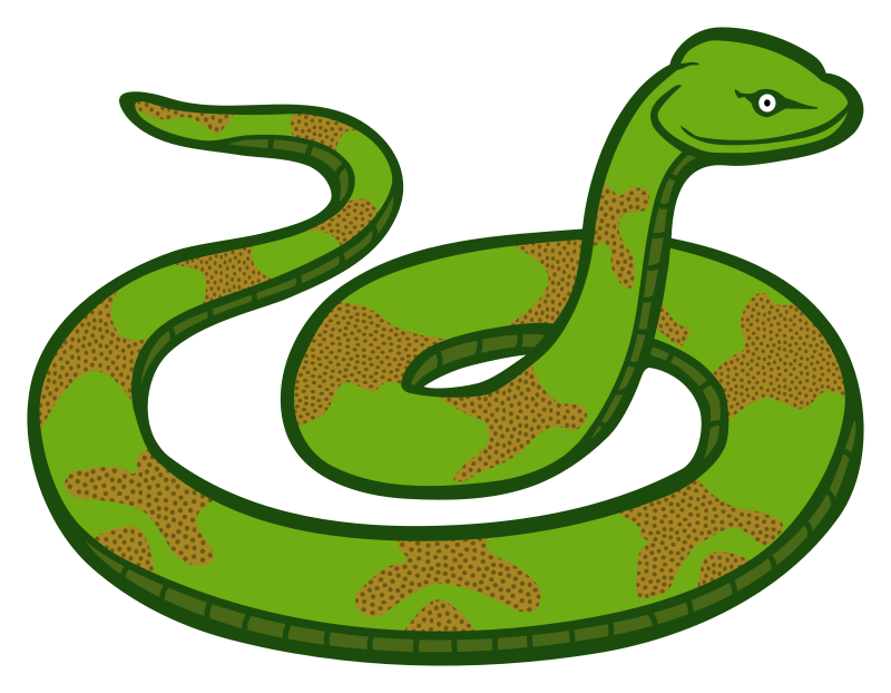 Coloured medium image png. Snake clipart reptile