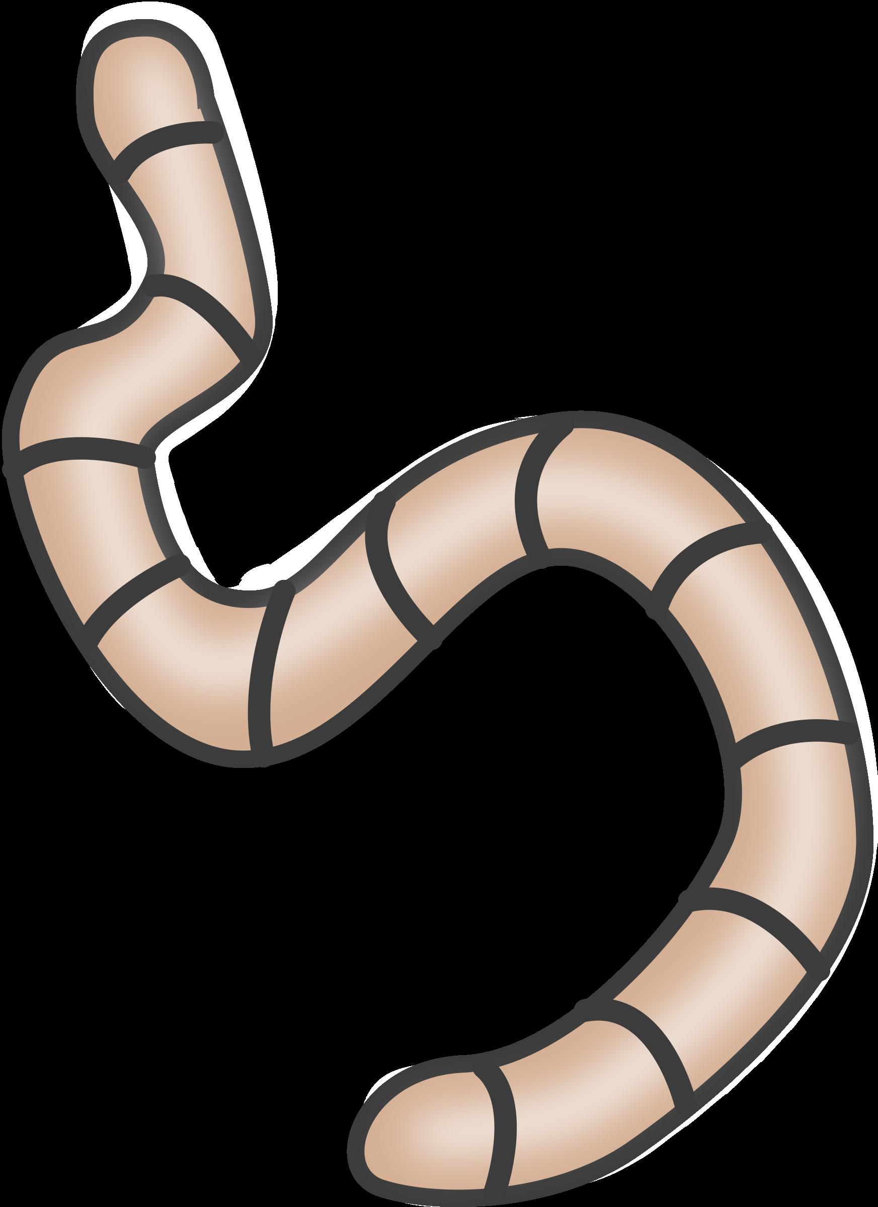 Boa constrictor cartoon clip. Snake clipart face