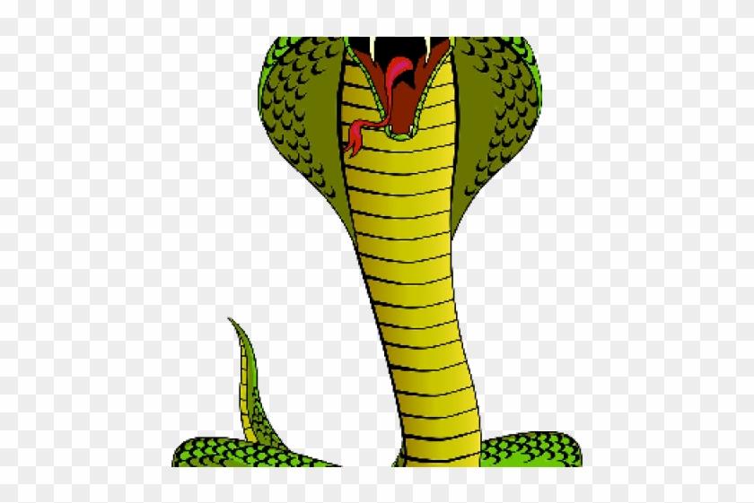 Cobra clipart dangerous snake. Serpent transparent cartoon