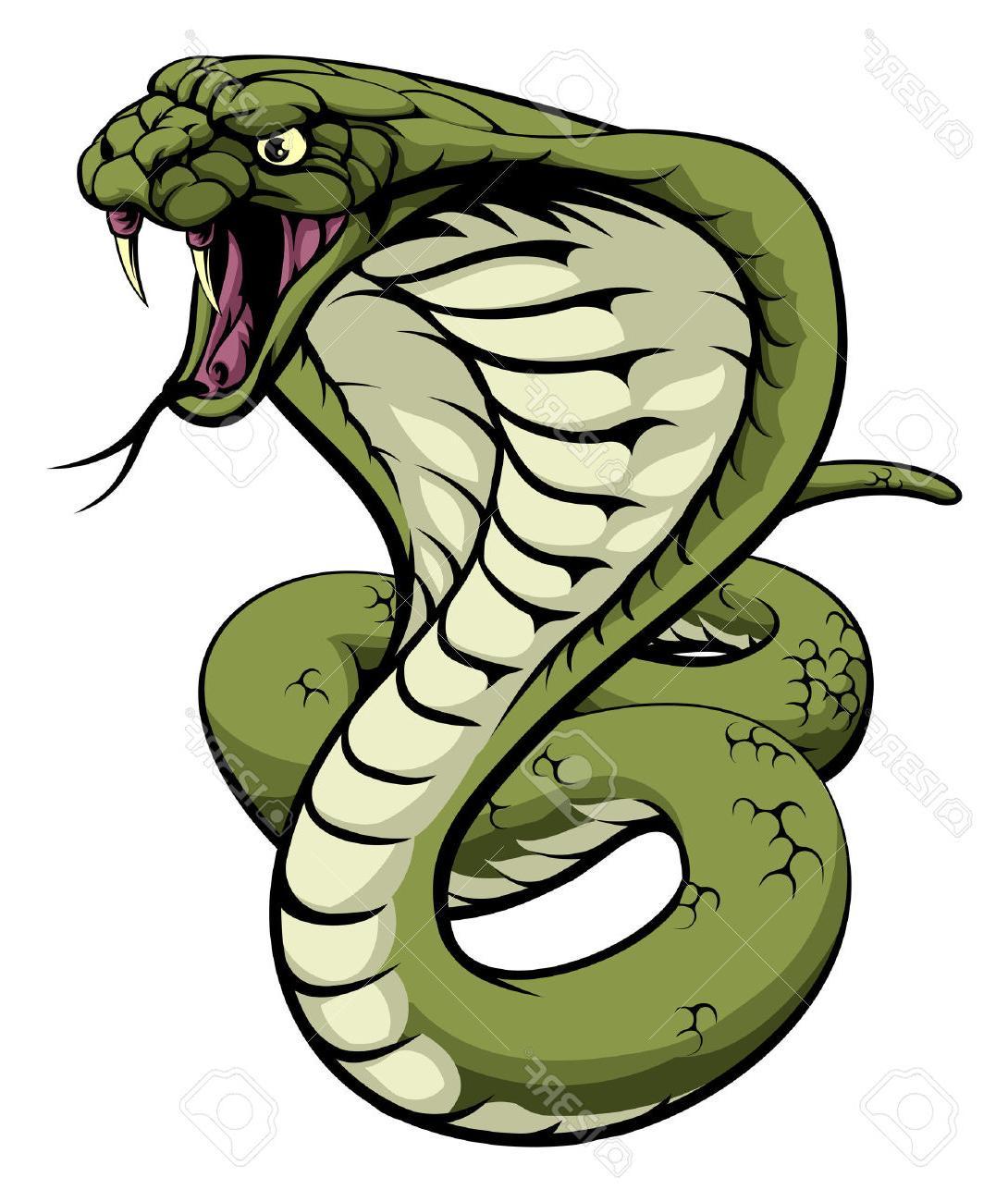 Free download best on. Cobra clipart king cobra