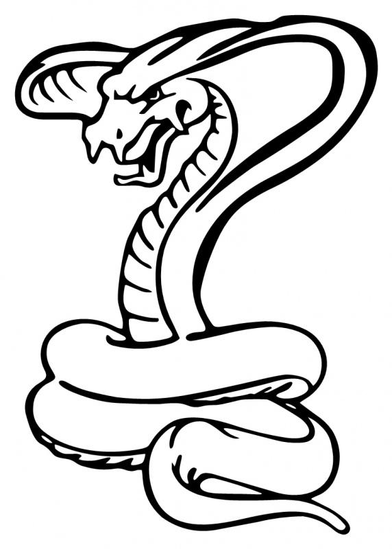 Snake black and white. Cobra clipart outline