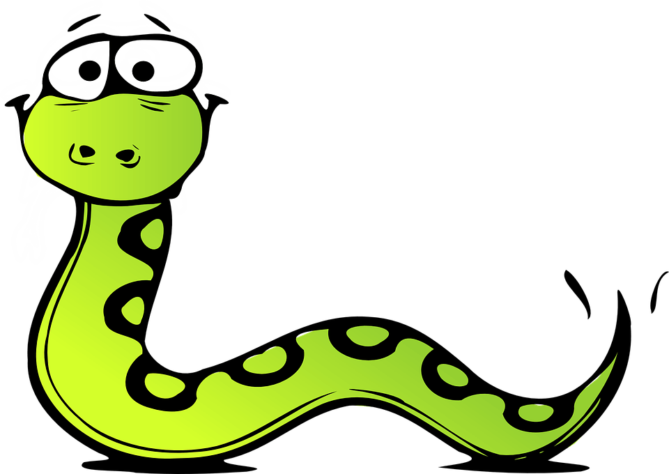 Cobra clipart rattlesnake head. Anaconda pet snake
