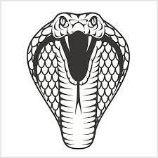 cobra clipart rattlesnake head