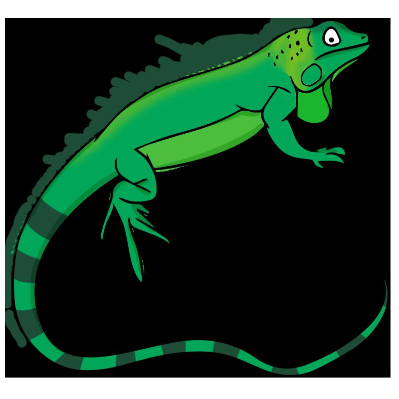 Pencil and in color. Cobra clipart reptile