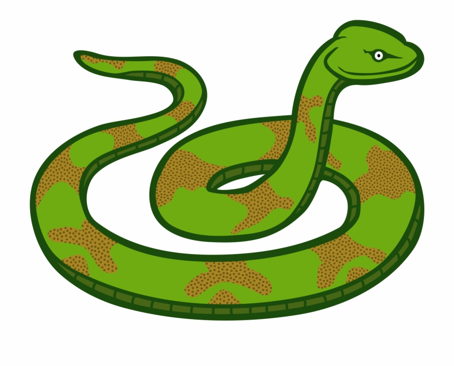 Cobra clipart scary snake. At getdrawings free png