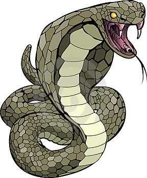 Cobra clipart scary snake. Cartoon tattoo images designs