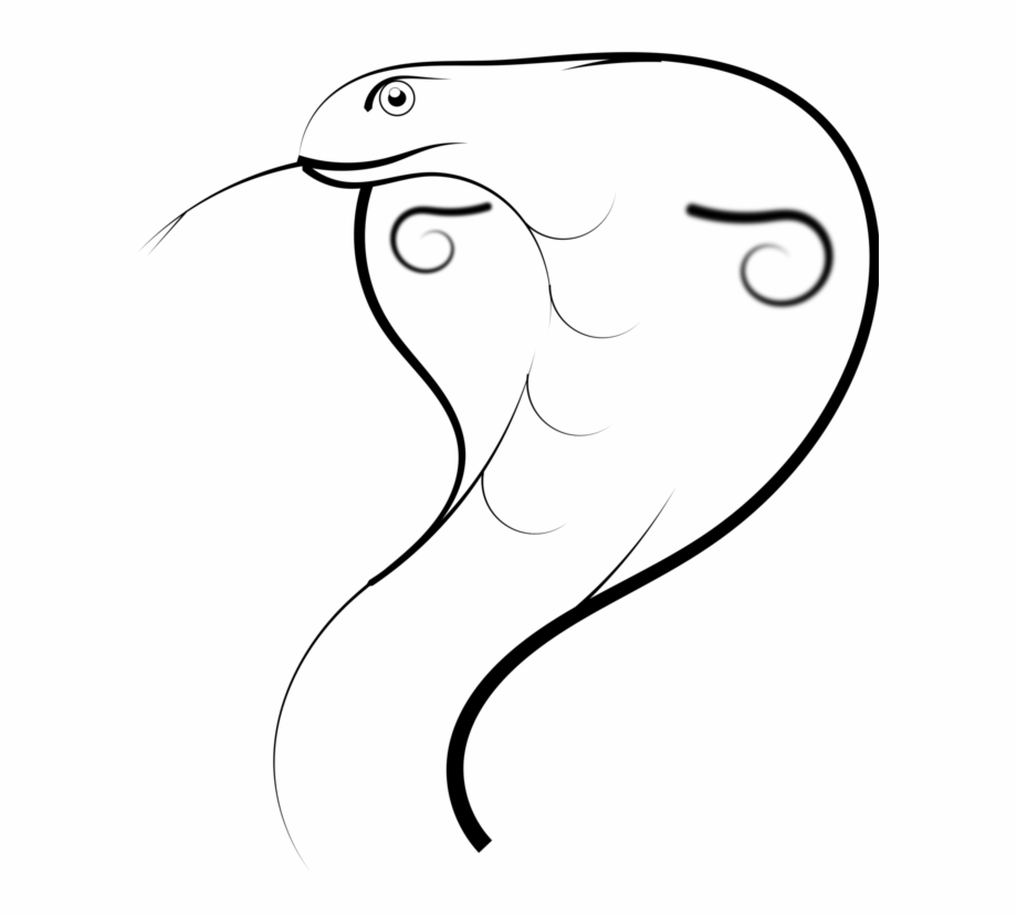 Drawing snakes pencil line. Cobra clipart sketches