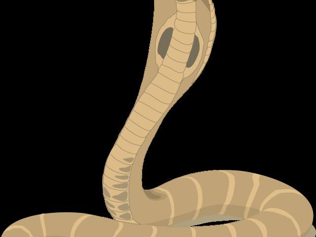 Cobra clipart snake hood. Free king download clip