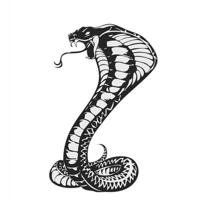 cobra clipart tattoo cobra tattoo transparent free for download on webstockreview 2020 cobra clipart tattoo cobra tattoo