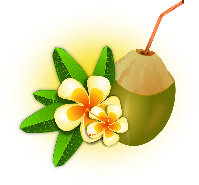Cocktail clipart animated. Caribbean coconut drink pencil
