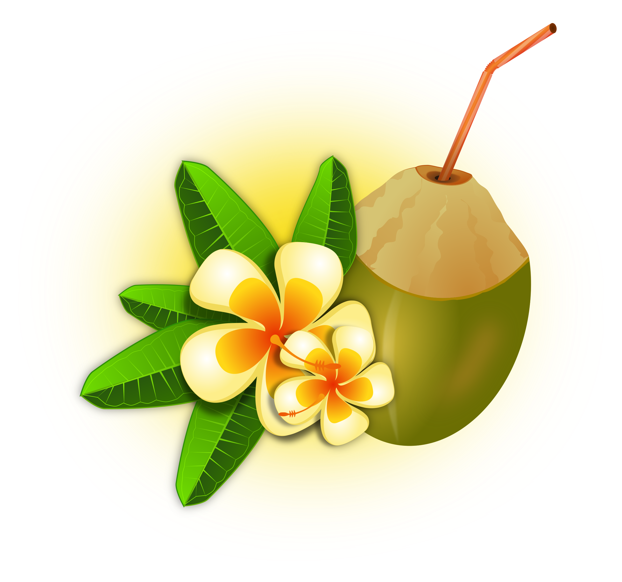 Cocktail clipart coconut. Big image png