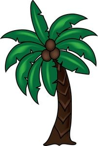 Palm tree image tropical. Coconut clipart