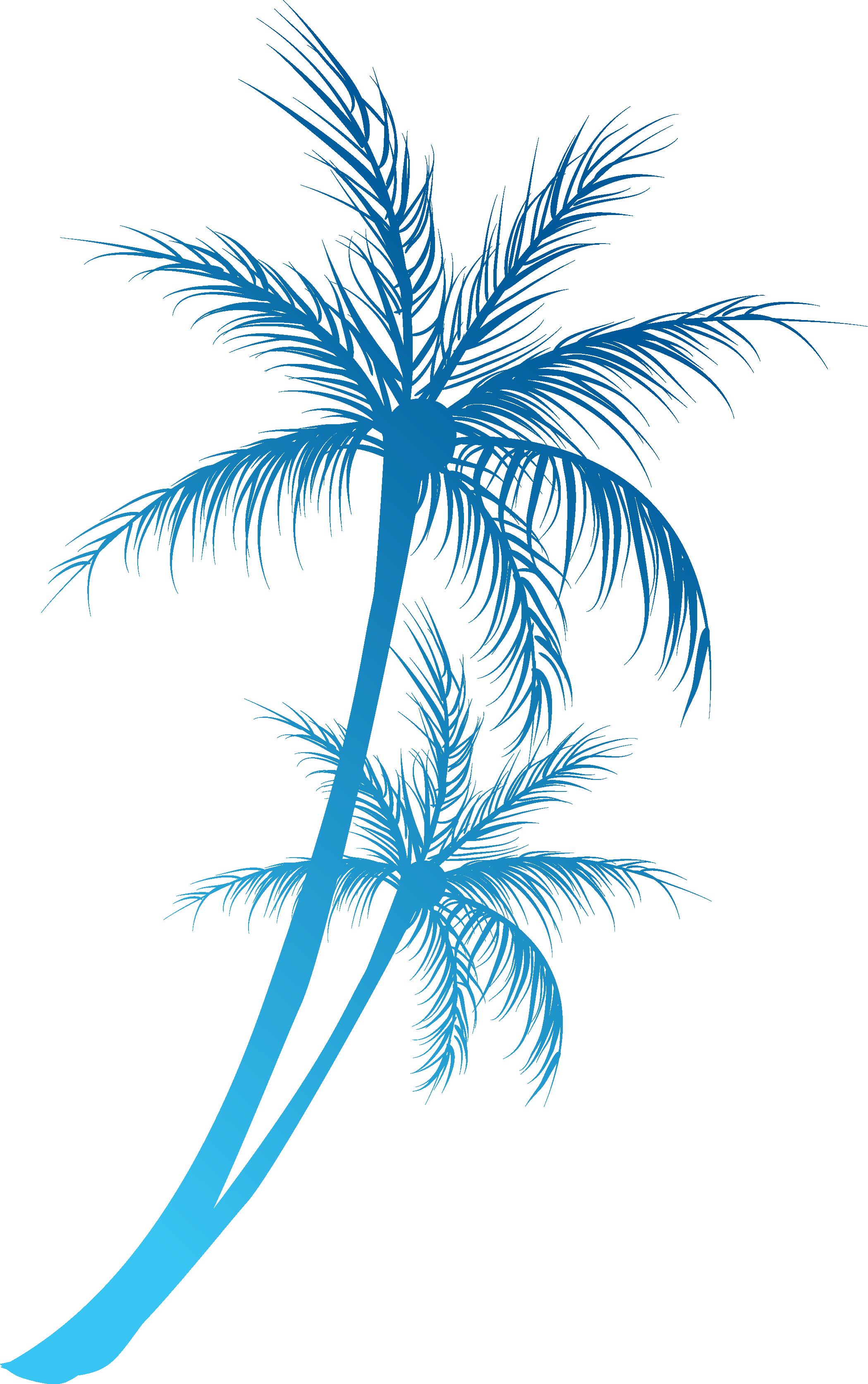Arecaceae royalty free clip. Coconut clipart branch
