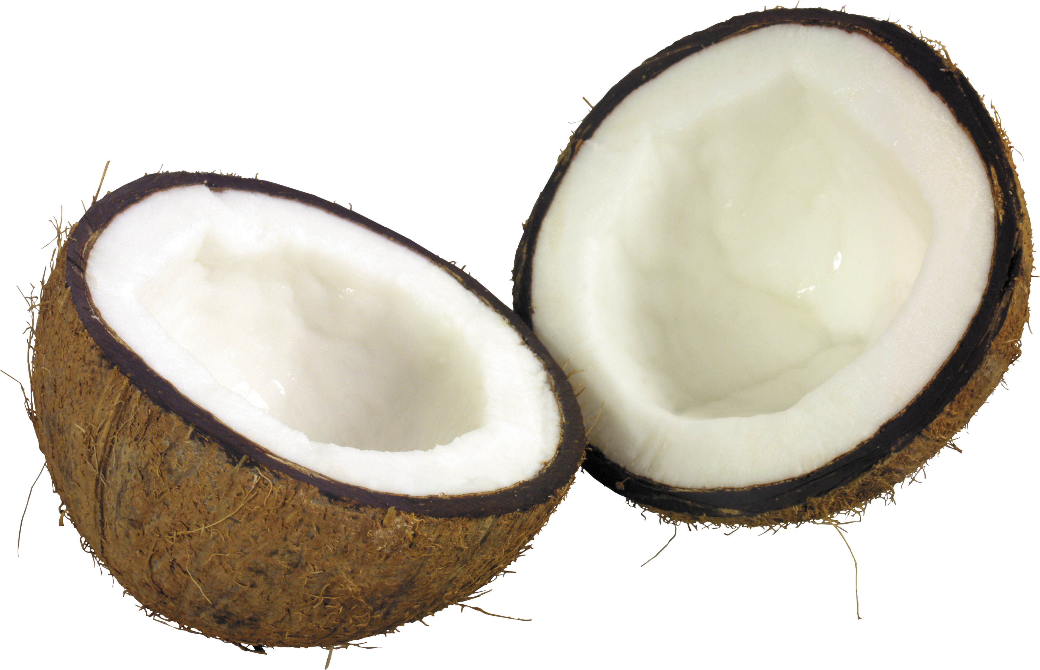Png image . Coconut clipart clear background