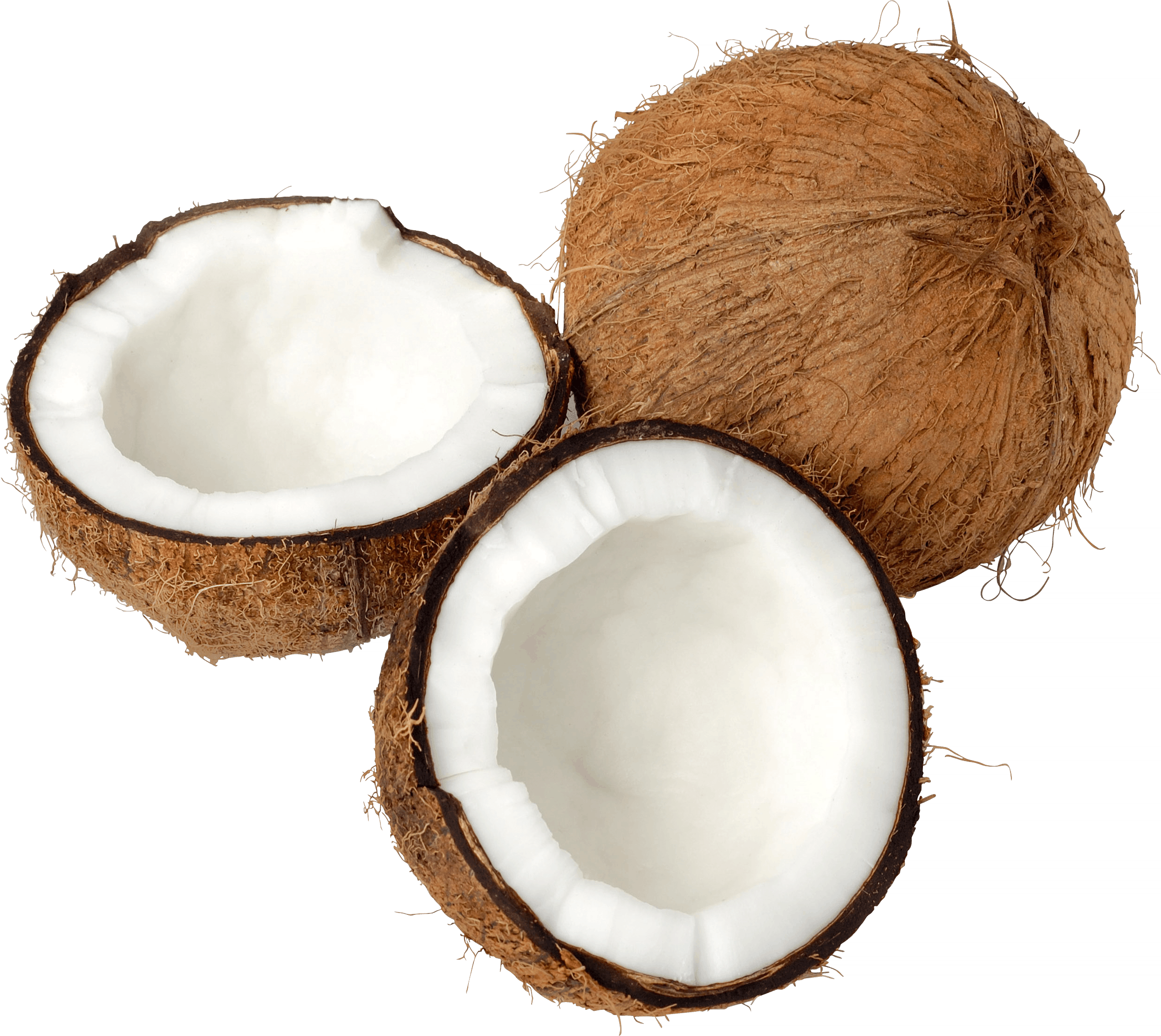 Coconut clipart clear background. Trio open transparent png
