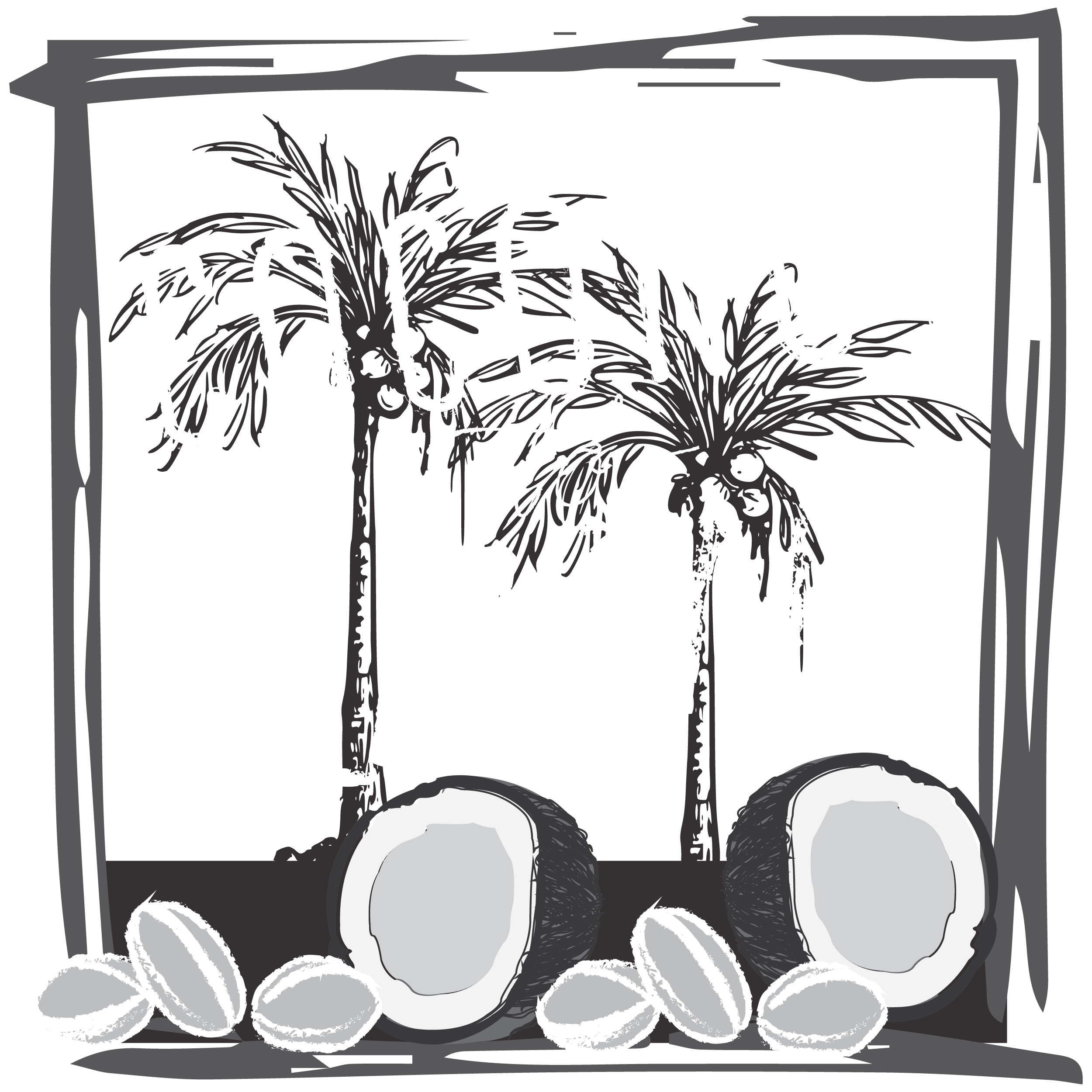 To almond what s. Coconut clipart coconut milk