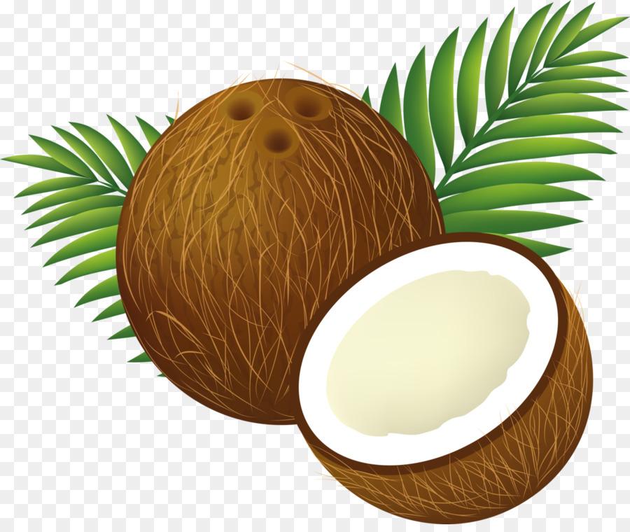Palm trees illustration food. Coconut clipart coconut milk