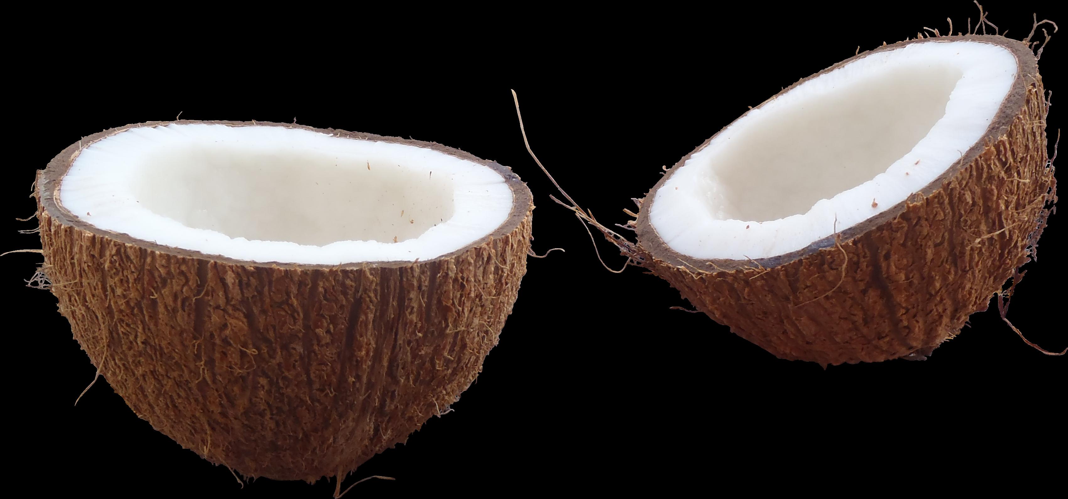 Coconut clipart coconut milk. Png transparent images all