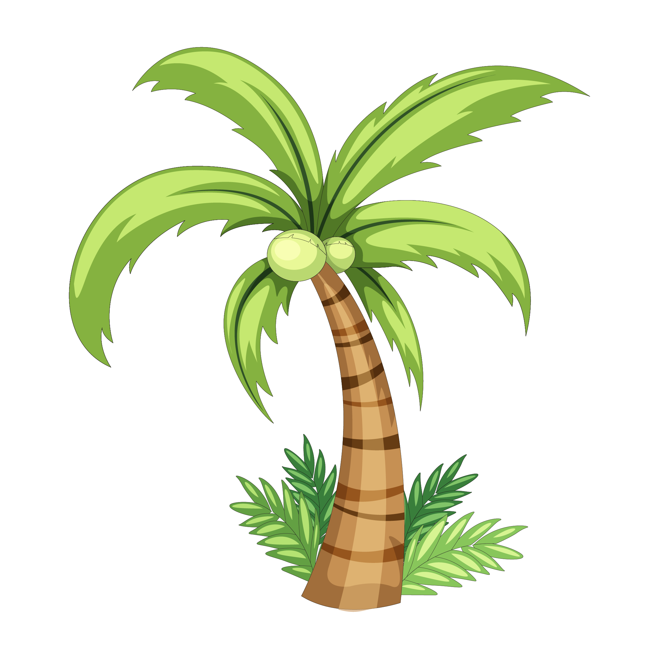 Coconut clipart drawn. Drawing clip art palm