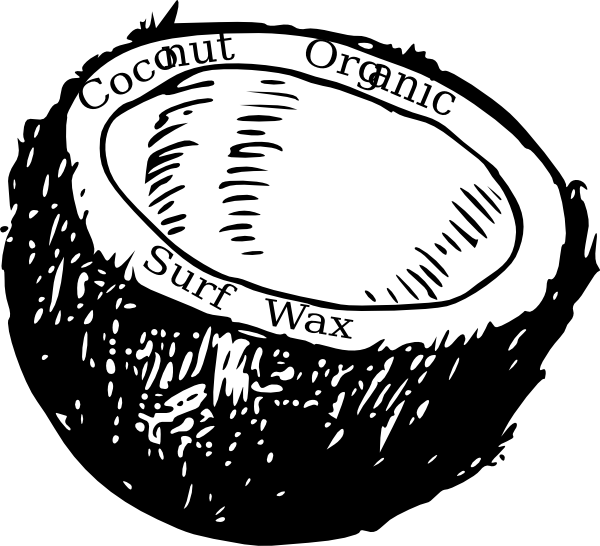 Coconut clipart drawn. Line drawing at getdrawings