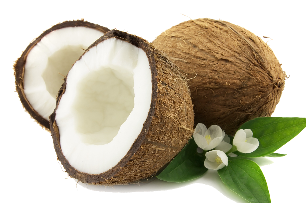 Png transparent images all. Coconut clipart fresh
