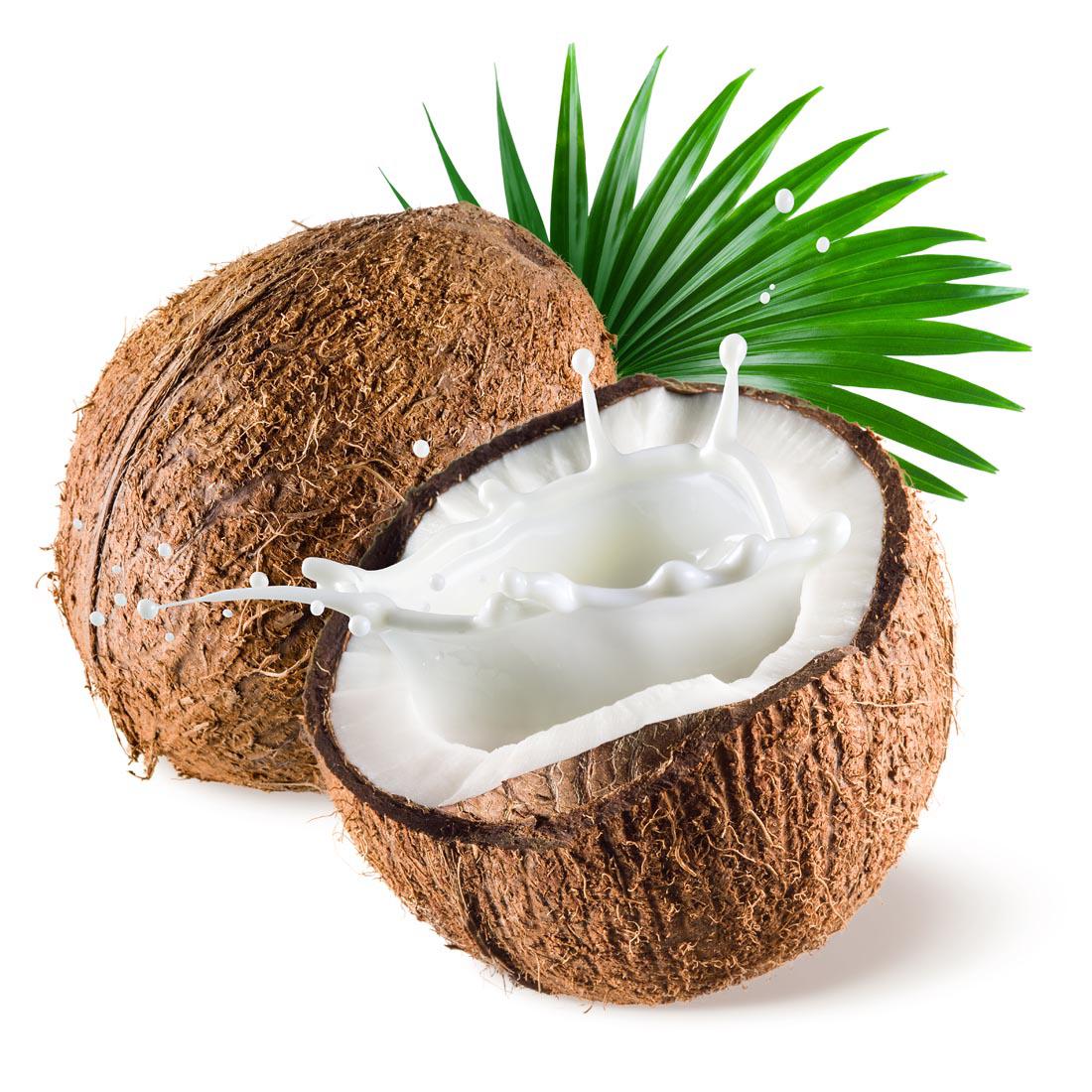 Coconut clipart fresh. Milk powder water transprent