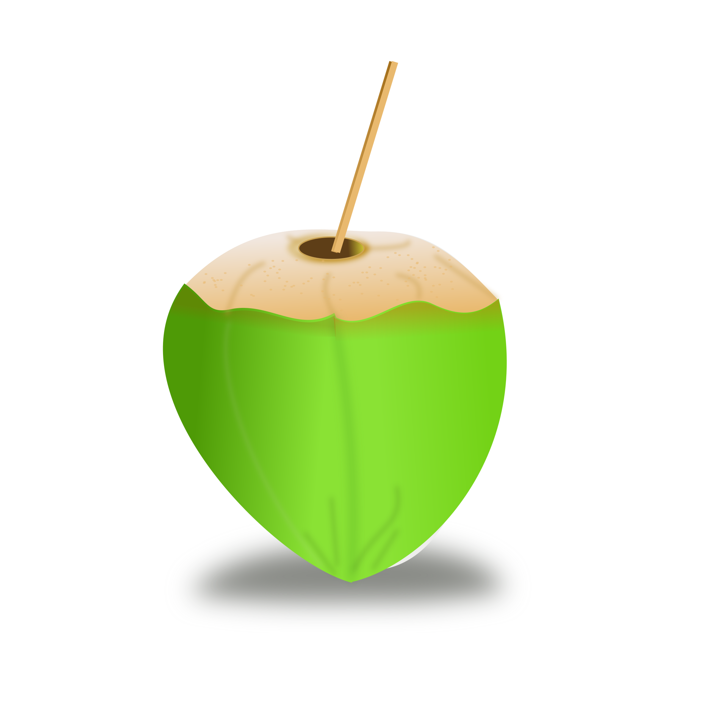 collection of green. Coconut clipart fresh
