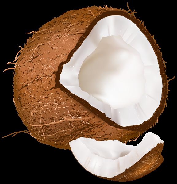 Open png image pinterest. Coconut clipart fresh