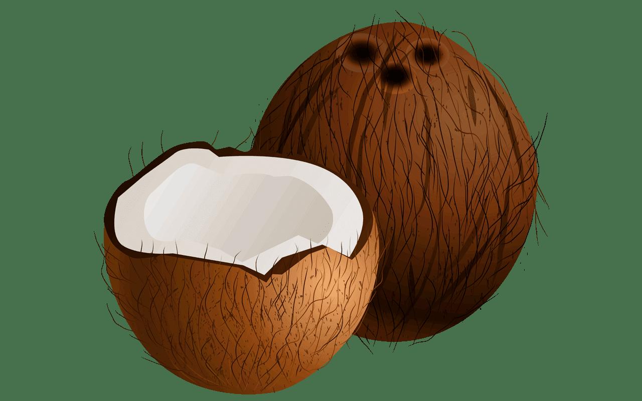 Coconut clipart fresh.  free shocking fruit