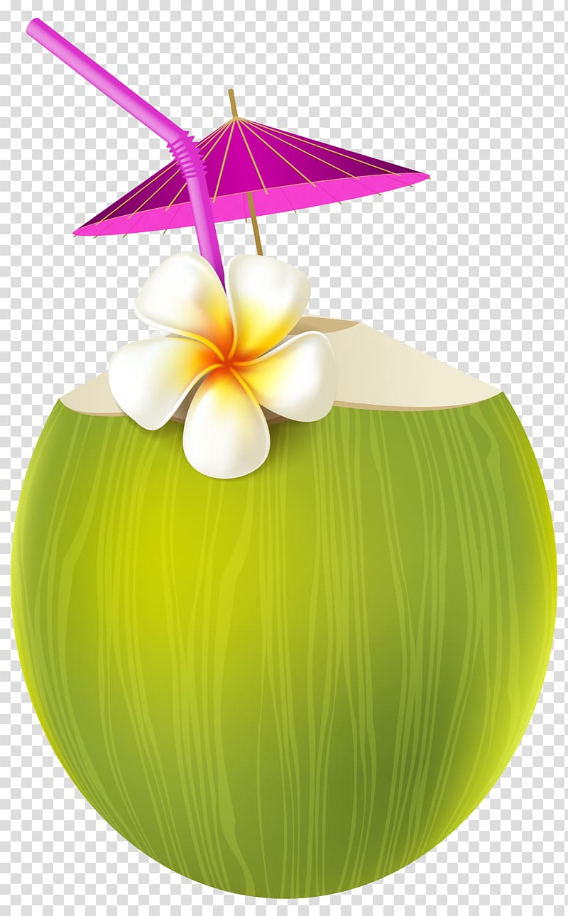 Green juice illustration ice. Coconut clipart gold cocktail