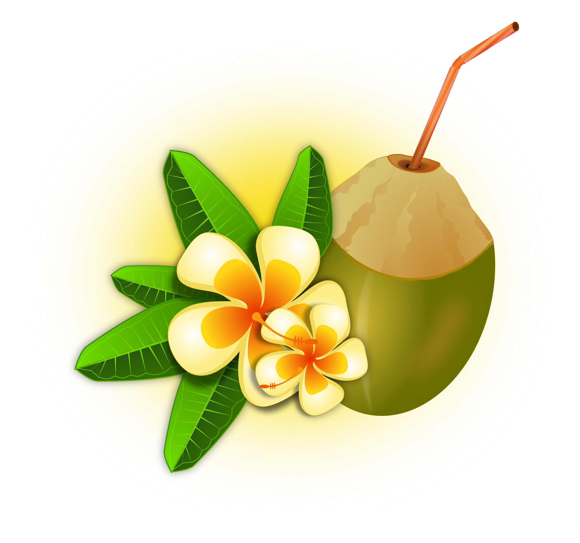 File cocktail svg wikimedia. Coconut clipart green coconut