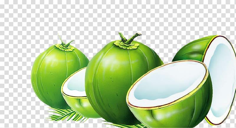 Four coconuts artwork dodol. Coconut clipart green coconut