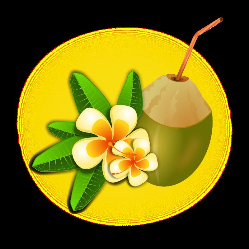 Coconut clipart hawaiian theme. Hawaii clip art free