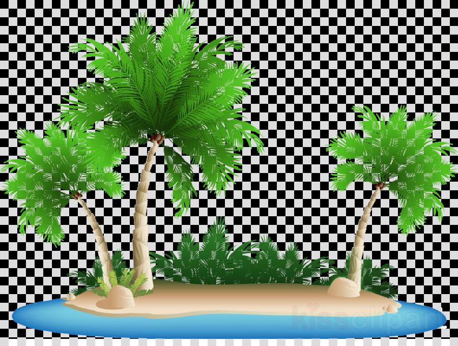 Coconut clipart i m. Tree cartoontransparent png image