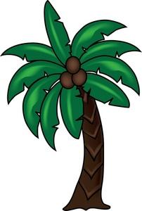 Coconut clipart i m.  tree clip art