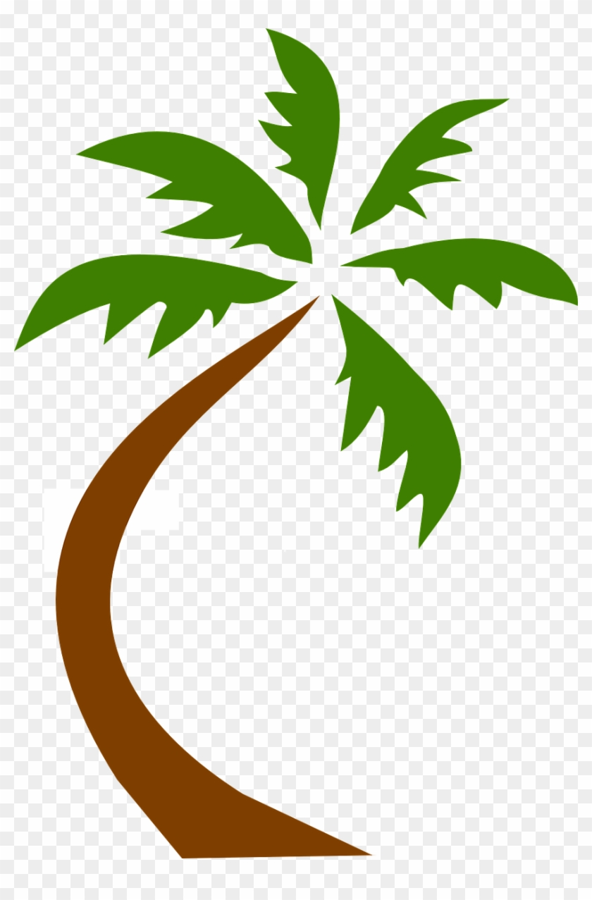 Coconut clipart large. Tree tropical palms png