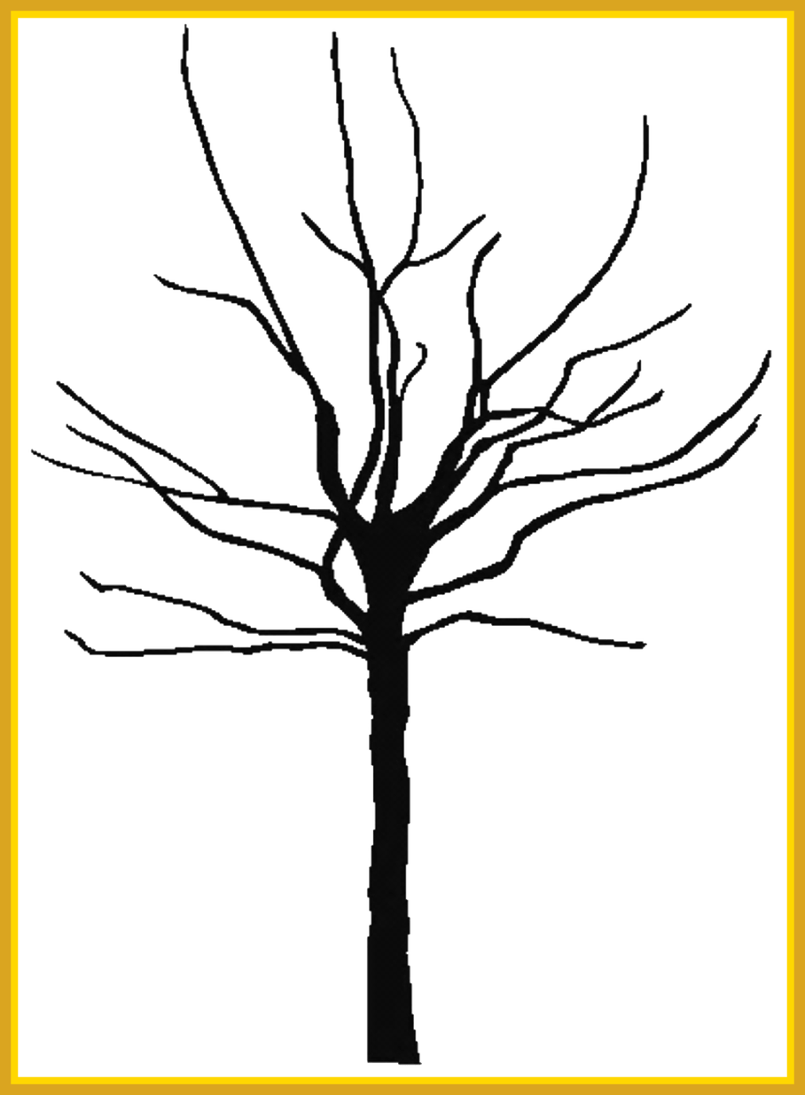Unbelievable bare tree projects. Coconut clipart large