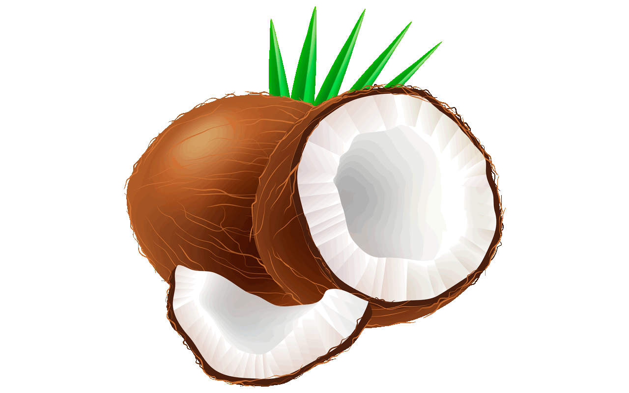 Coconut clipart lime.  clip art